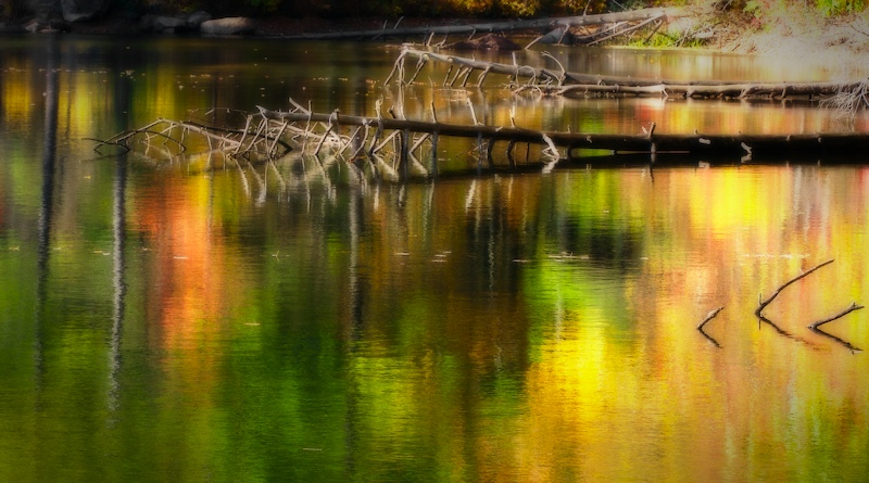 pond_abstract.jpg